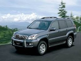 Land Cruiser Prado 120 (02-08 год)